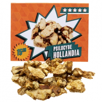 Hollandia 15 gram - Magic Truffels